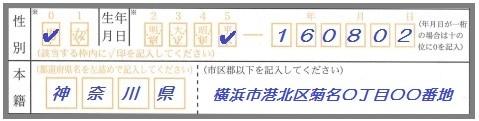パスポート申請書 書き方 表面